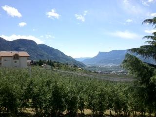 Südtirol-Aussicht